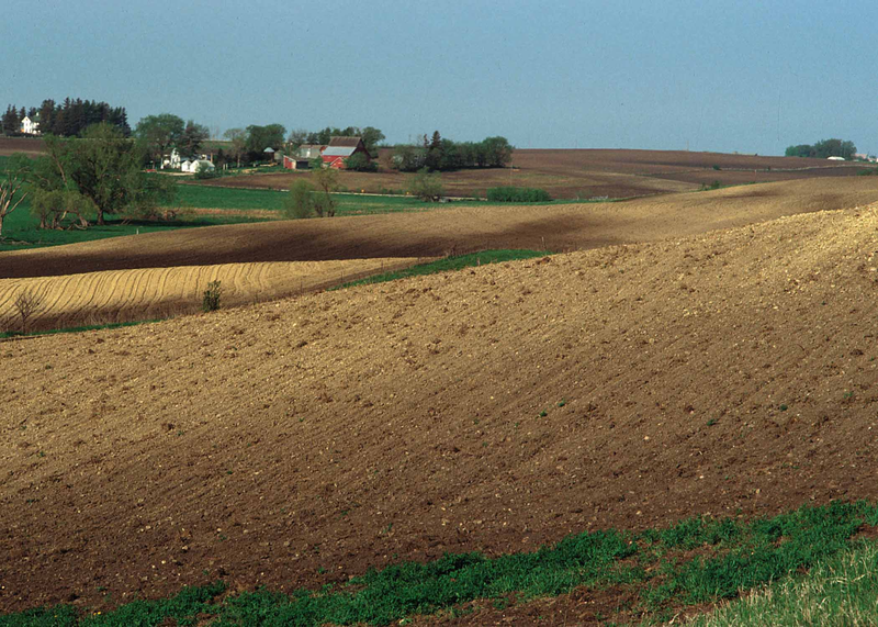 800px-Eroded_soils_in_Iowa